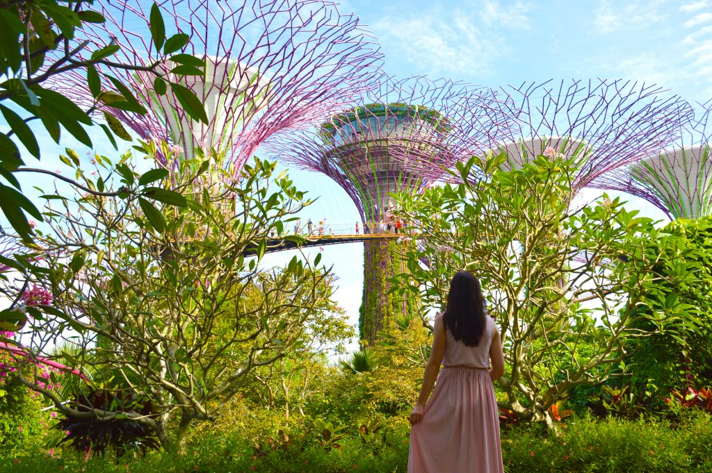 Gardens by the Bay sinagpur