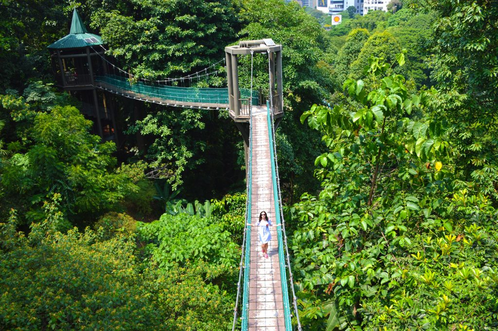 Kuala Lumpur KL Forest Eco Park – Canopy Walkway